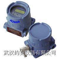防爆型固定式氫氣檢漏儀 H2600