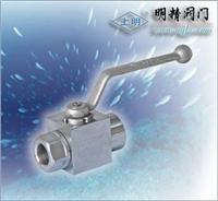 高壓鍛打小型球閥 Q11N-100/160P