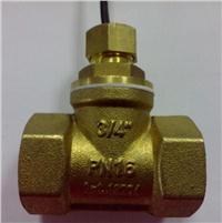 水流開關 FS-DN20T