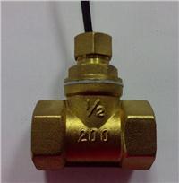 水流開關 FS-DN15T