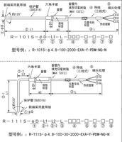 R-101S/R-111S鎧裝熱電阻PT100鉑電阻RTD溫度探頭