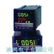 DH800显示仪表