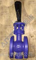 GWXDF3204H/F雙向流硬碰硬旋球閥 硬碰硬旋球閥 旋球閥 GWXDF3204H/F