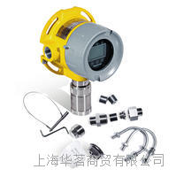 在线一氧化碳探测器 RAEGuard 3