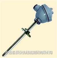 活動法蘭式一體化熱電偶/熱電阻 WRNB-320  WZPB-320  WRNB-330  WZPB-330