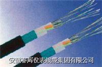 交聯聚乙烯絕緣粗鋼絲鎧裝聚乙烯護套電力電纜 YJV43 YJLV43
