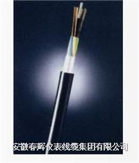 松套層絞式光纜 GYTA-12B1