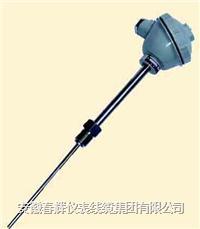 活動螺紋管接頭式一體化熱電偶/熱電阻 WRNB-92 WZPB-92