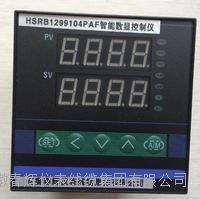 HSRB1299104PAF數顯控制儀 HSRB1299104PAF  HSRB1299102PAI  HSRB1299102PAH H