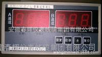 振動檢測儀 振動監測保護儀 XH-V2/L
