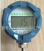 就地溫度顯示儀 GYT-II