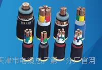 RVS红黑双绞电缆具体型号 RVS红黑双绞电缆具体型号