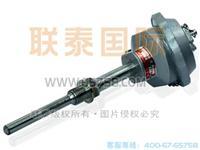 WZP2-280雙支鉑熱電阻 WZP2-280