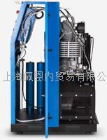 高壓進口充氣泵