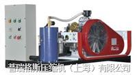 氮氣增壓機 PGA15-0.22