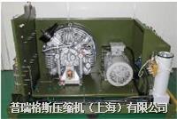 高壓氦氣回收壓縮機 PGH15-1.0