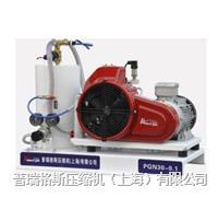 高壓氮氣壓縮機,氮氣增壓機,高壓氮氣增壓機 PGN25-0.1