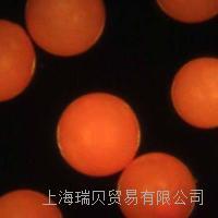 Duke橙色熒光聚乙烯微球,尺寸180-355微米 橙色熒光聚乙烯微球