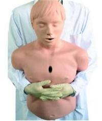 上等**氣道梗塞及CPR模型  KAB/CPR155
