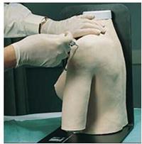 新肩關節腔內注射模型 KAH-JG