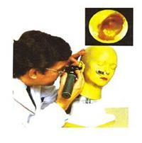 上等耳診斷模型 KAH-LV41