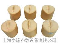 產前宮頸變化與產道關係模型KAH-20 KAH-20
