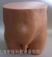 針灸臀部訓練模型 ZK1000LS