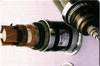 变频器电力电缆 BPVVP