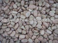 dry broad beans