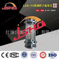 HQLZB-TS玻璃转子流量计