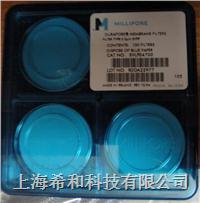 HVLP14250 聚偏二氟乙烯,0.45um,孔徑,142mm直徑