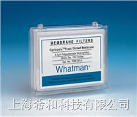 Whatman Cyclopore聚碳酸酯膜和聚酯膜 7060-2504