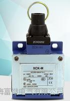 XCK-MR202行程開關 XCK-MR202