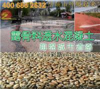 上海睿龍露骨料透水混凝土,海綿城市路麵