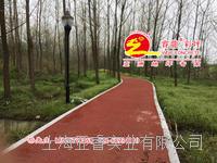 紅色帕米亞孔透水混凝土路麵鋪裝,透水砼強固劑供應,上海睿龍廠家 WDO112