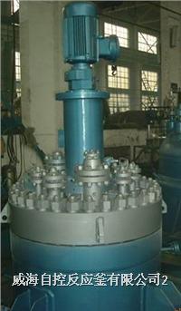 高壓反應釜(端部平蓋結構) WHF
