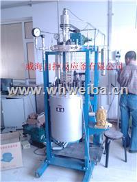 10L实验用反应釜 WHFS-10