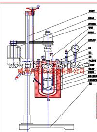 5L試驗室用反應釜 WHFS-5L
