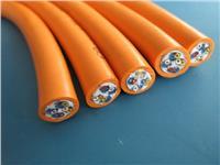 氟塑料绝缘硅橡胶护套电力电缆 ZR-F46(FV)3*4+1*2.5