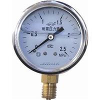 不锈钢耐震压力表 ybfn-100