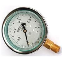 耐震压力表YN-150ZQ