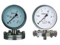 Y-100BF/Z/MF/316不锈钢法兰隔膜压力表 Y-100BF/Z/MF/316