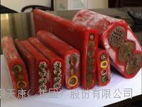 承拉(钢丝加强型移动)扁平软电缆 YFFB-L