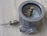 远传双金属温度计 安徽天康WSSP-511 WSSP-411