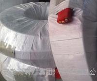 安徽梁桥式行车扁平电缆加强型抗拉耐高温特种电缆公司 YGGBG450/750V