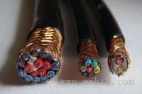 安徽天康公司计算机电缆型号规格图片 DJYVPR1x2x1.5