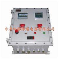 鋼板防爆掛式配電箱 BXM