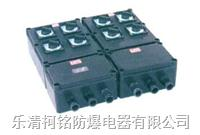 防爆防腐照明(動力)配電箱 BXM(D)8050