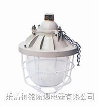 100W隔爆型防爆燈 BCD-100