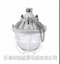 200W隔爆型防爆燈 BCD-200